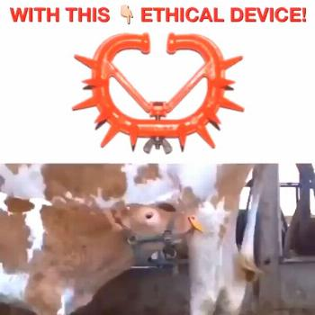 Think cows' milk is moral? Think again! Try almond, cashew, hemp,