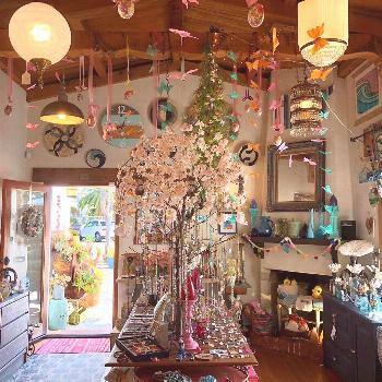 We redecorated It's very spring in the shop, we are ready . . . #