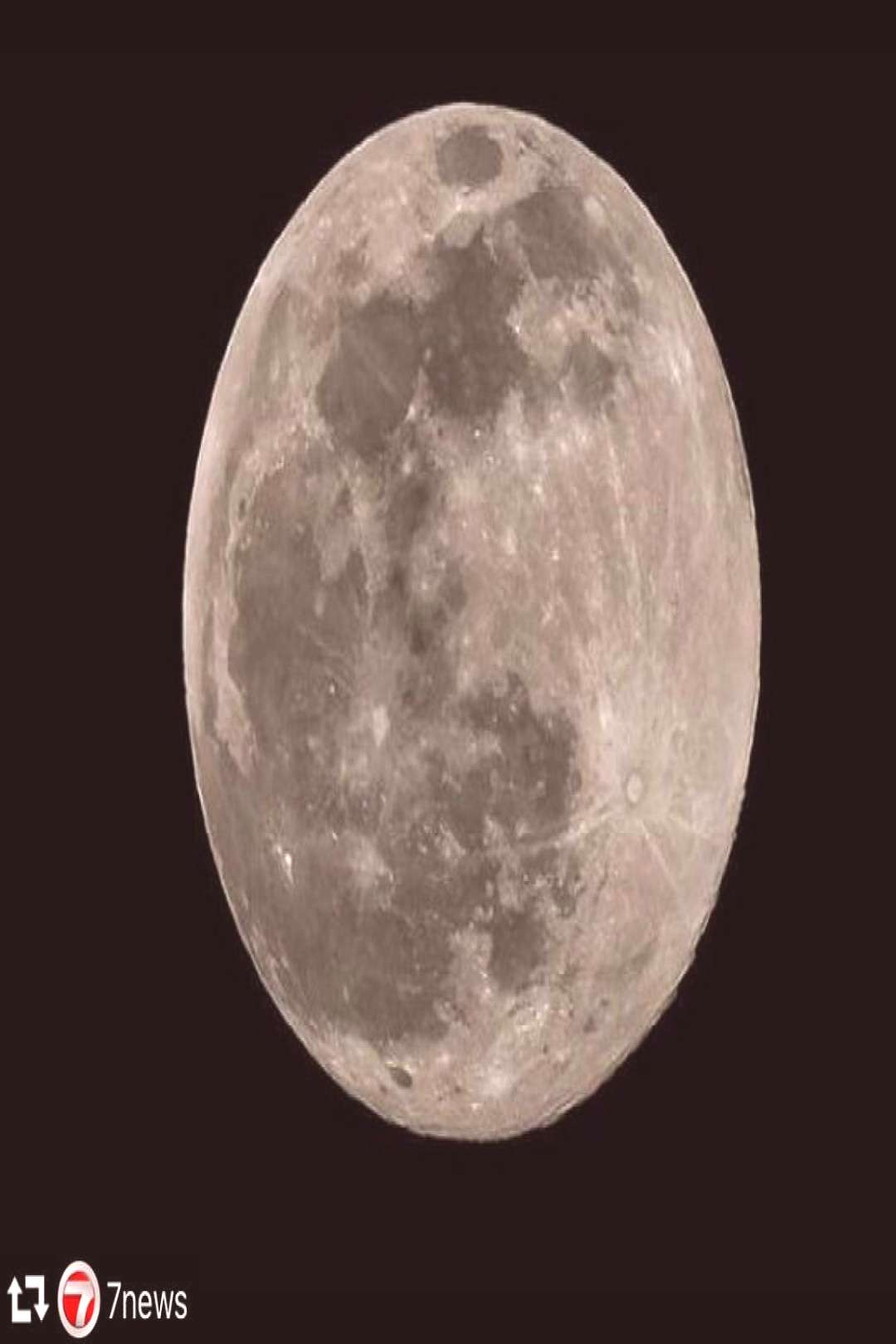 Its the moon rabbit A mythical figure who lives on the Moon in F