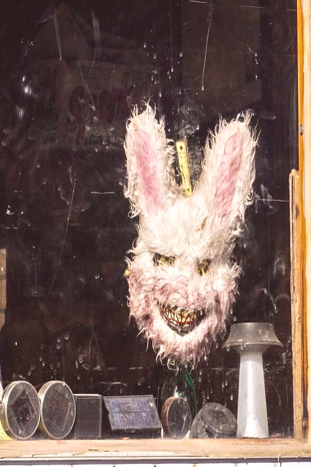 Just in time for Easter - - - - #easter #easterbunny #easterdecor