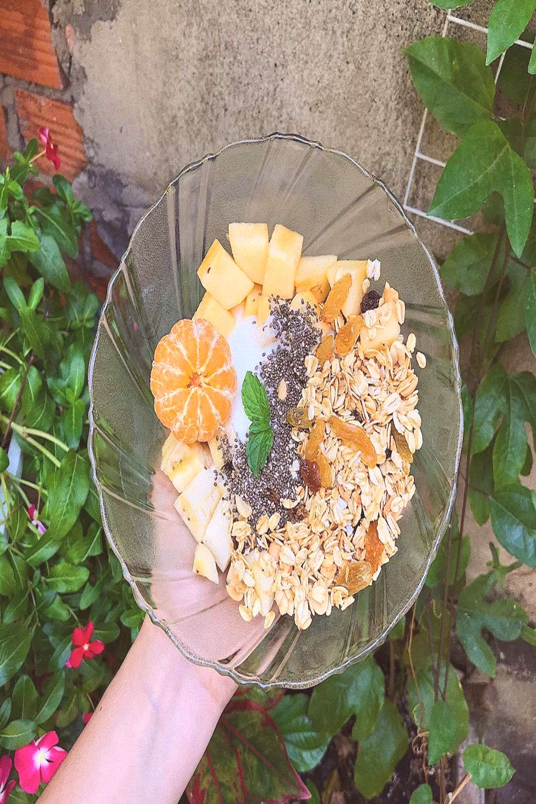 plant flower and food