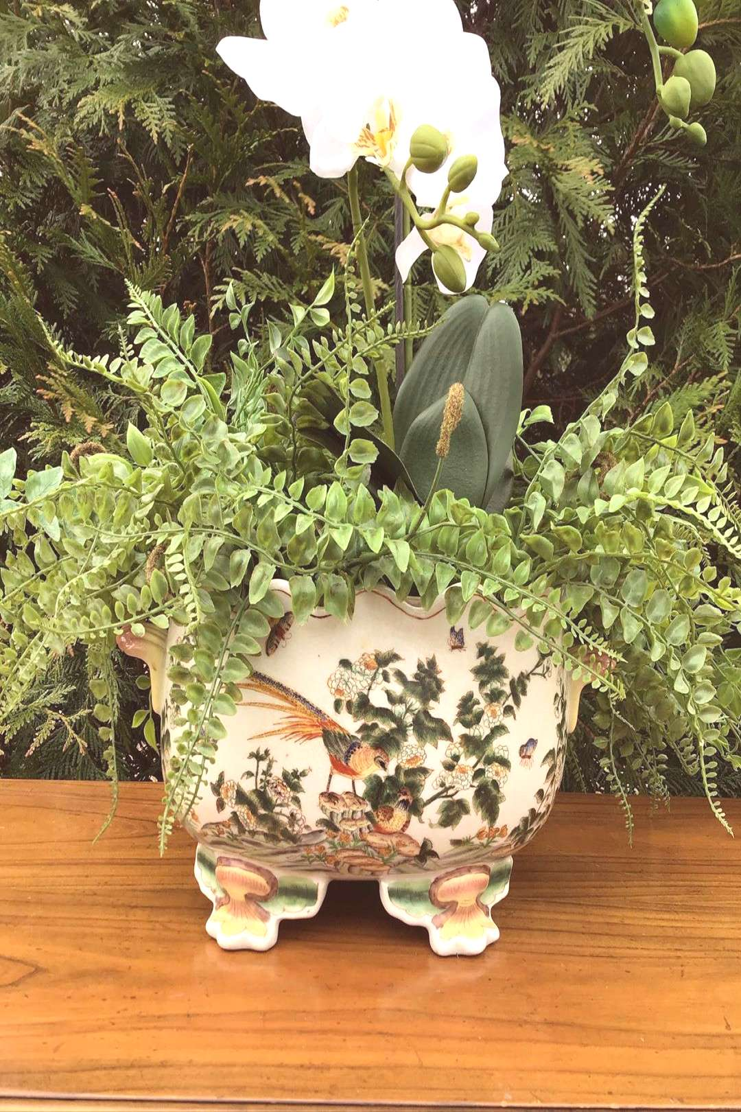 plant flower table outdoor and indoor